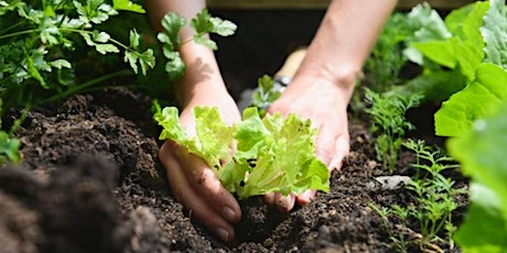 Soil Health & Our Health   Grow Your Own Vegetables tickets