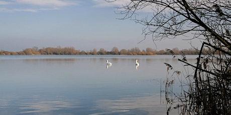 Wednesday Wander at RSPB Fen Drayton Lakes tickets