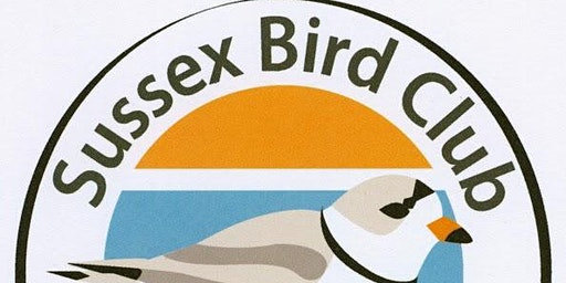 Sussex Bird Club March 2020 Monthly Meeting