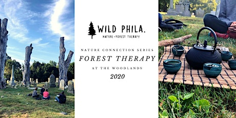 Nature Connection Series: Forest Therapy at The Woodlands tickets