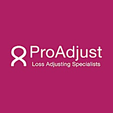 ProAdjust specialist loss adjusters in association with Dillon Eustace and in partnership with The Insurance Institute logo