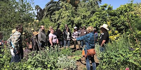Benicia & Vallejo Demonstration Food Forest Garden Tour tickets