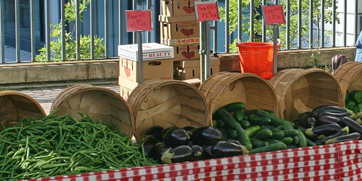 Farmers Market - Summer Adventure Camp