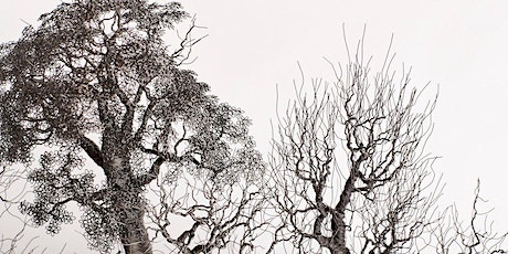 Wire Tree Class at Ovedia tickets