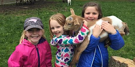 Older Kids Goat Yoga! (Ages 4-9) - Sunday 7/19 | 8:30am - 9:15am | tickets