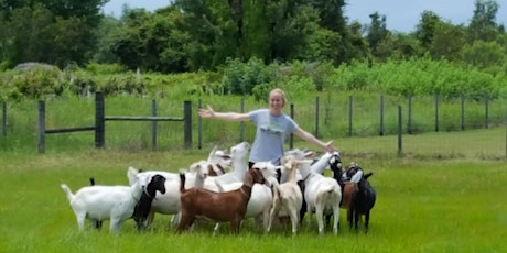 Goat Day at Circle Bar C Goat Dairy tickets
