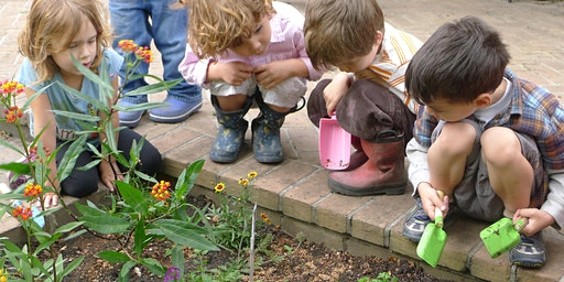 Play Gardens- Creating Spaces of Natural Wonder and Curiosity