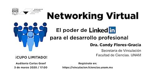Networking virtual -  El poder de LinkedIn para el desarrollo profesional