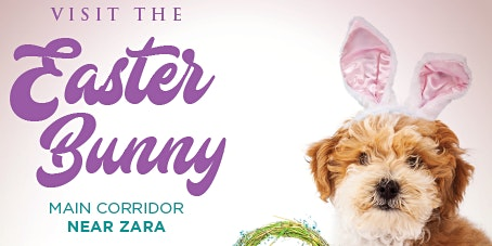 Pet Nights with the Easter Bunny!