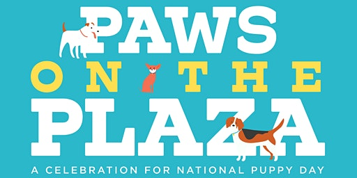 Paws on the Plaza Vendor Application