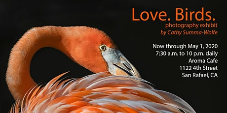 Love. Birds.  tickets