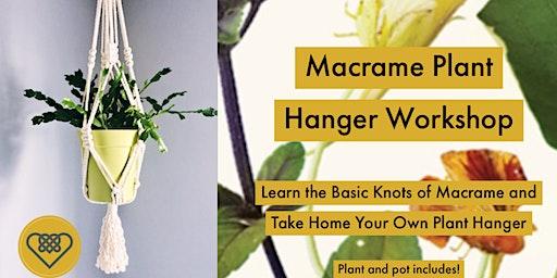 Macrame Plant Hanger Class