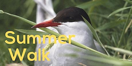 Summer Walk tickets