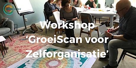 Workshop GroeiScan voor Zelforganisatie tickets