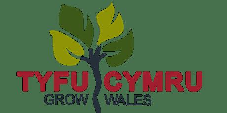 Christmas Wreath Making at Royal Welsh Winter Fair tickets