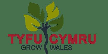 Christmas Wreath Making at Royal Welsh Winter Fair