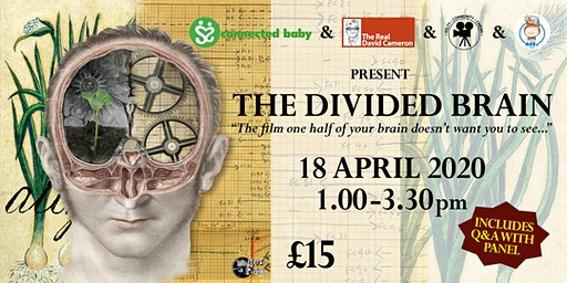 The Divided Brain 2020 Tour - FIFE