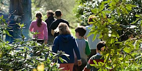 Woodland Adventure Day ( 10am - 4pm) tickets
