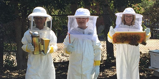 Pollinator Party - NC 4-H Bees and Butterfly Curriculum Training (Surry)