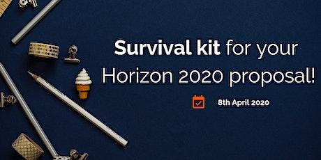 Survival kit for your Horizon 2020 or future Horizon Europe proposal tickets