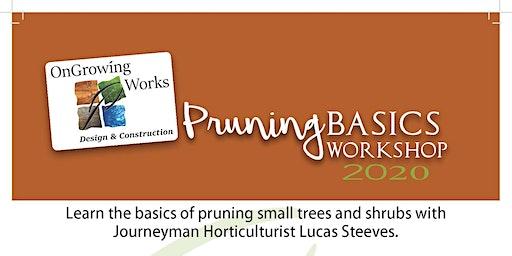 Pruning Basics Workshop