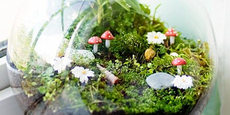 Terrarium Making Workshop: Moving to Virtual tickets