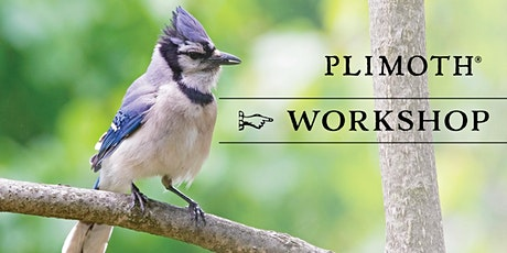 Plimoth Workshops: Bagels and Birds tickets