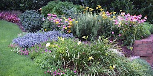 Perennial Gardens: Layering your beds first bloomers, add plants month for