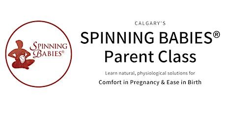 SPINNING BABIES® PARENT CLASS - Calgary (APRIL) tickets