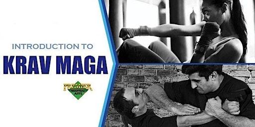 Free Krav Maga Self Defense Workshop