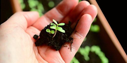 """TOUS AU VERT - Atelier créatif """"je fais des semis dans des godets en papier journal"""""""