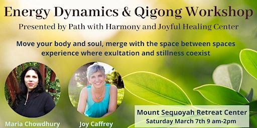 Energy Dynamics and Qigong Workshop