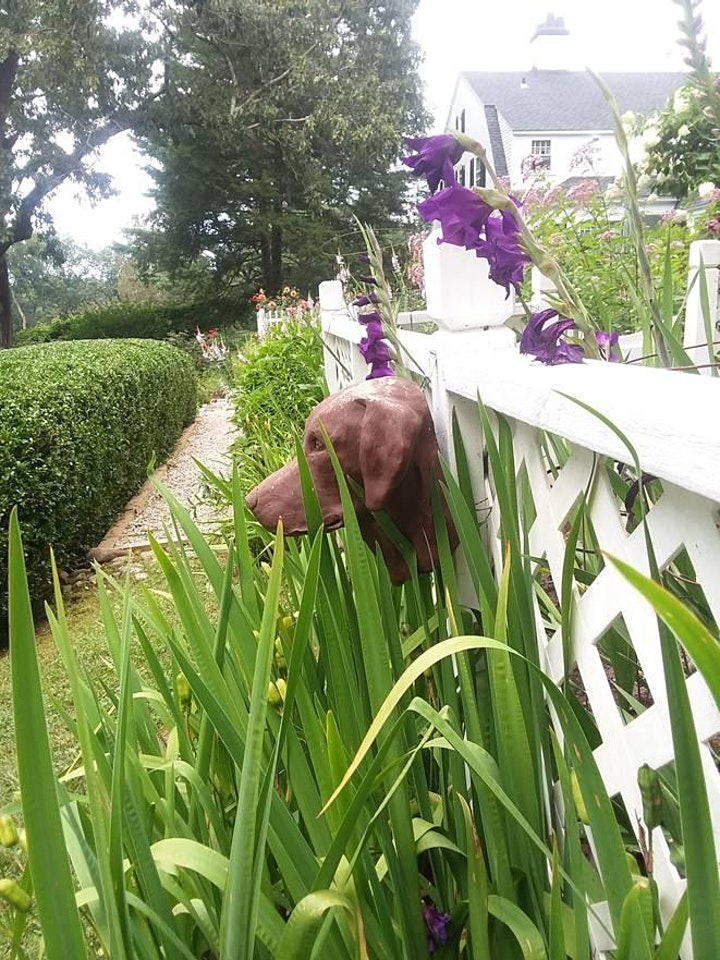 The Secret Gardens of Woodbridge Tour image