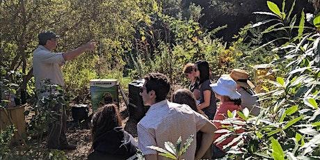 Home Composting Workshop - Online tickets