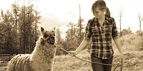 Dreamcatcher Introduction to Animal Assisted Therapy Seminar tickets