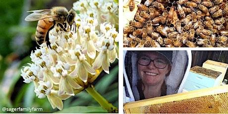 Backyard Beekeeping Workshop tickets
