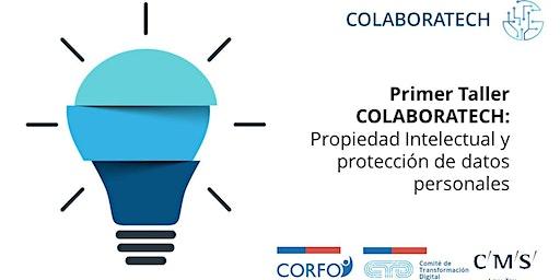 Protección Datos Personales y Propiedad Intelectual en  Salud Digital
