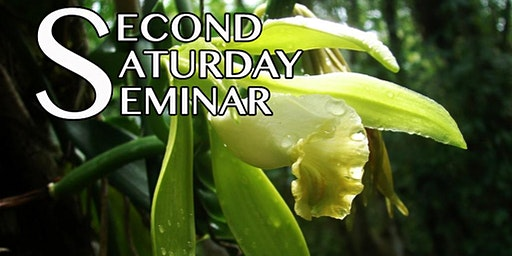 Second Saturday Seminar: Finding Florida's Lost Orchids With Dennis Giardina