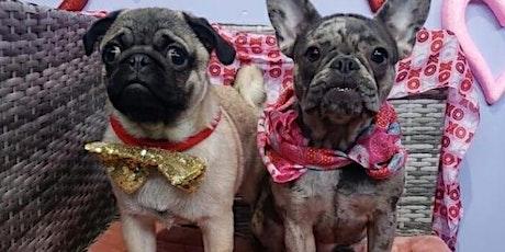 Pug-Lates Pug Pilates tickets