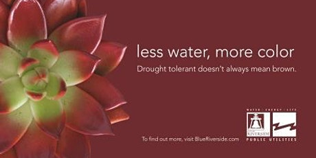 Less Water, More Color Landscape Training Workshop - Irrigation Trouble Shooting   tickets