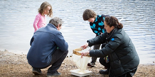 Water detectives