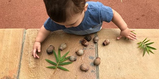 FREE Nature Play Session (Hallett Cove)