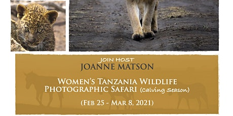 Women's Tanzania Wildlife Photographic Safari (Calving Season) tickets