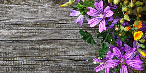 Gardening Using Biodynamic Principles