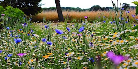 Wildflower Meadow Management tickets