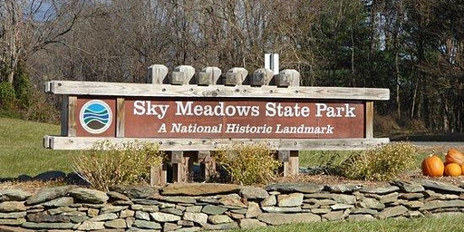 Easy Hike on Rolling Meadows Trail