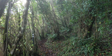 Straidkilly Nature Reserve – Biodiversity Walk  tickets