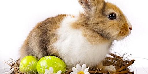 Woodland explorers Easter egg hunt