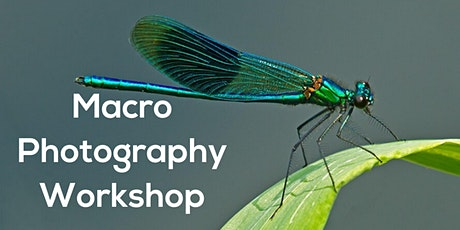 Macro Photography Workshop tickets
