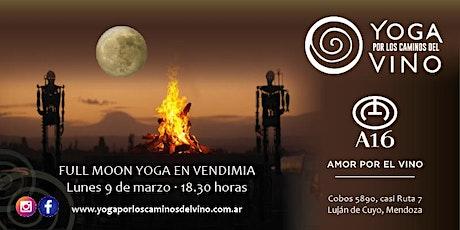 Yoga en Vendimia por los Caminos del Vino - Edición luna llena Bodega A16 entradas